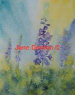 Jane Denton