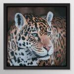 I see you (Jaguar)