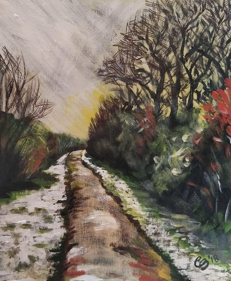 Salcey Forest Winter Walk